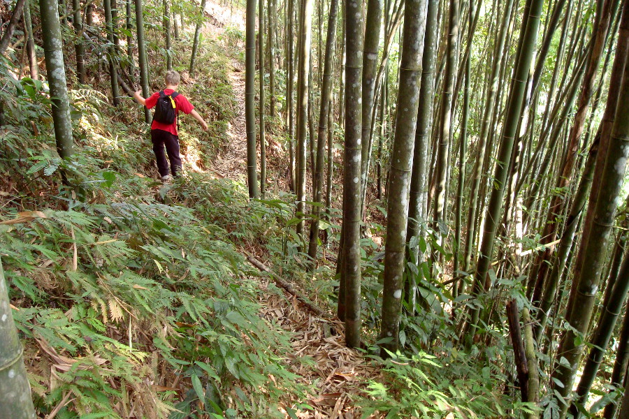 Agence trekking vietnam