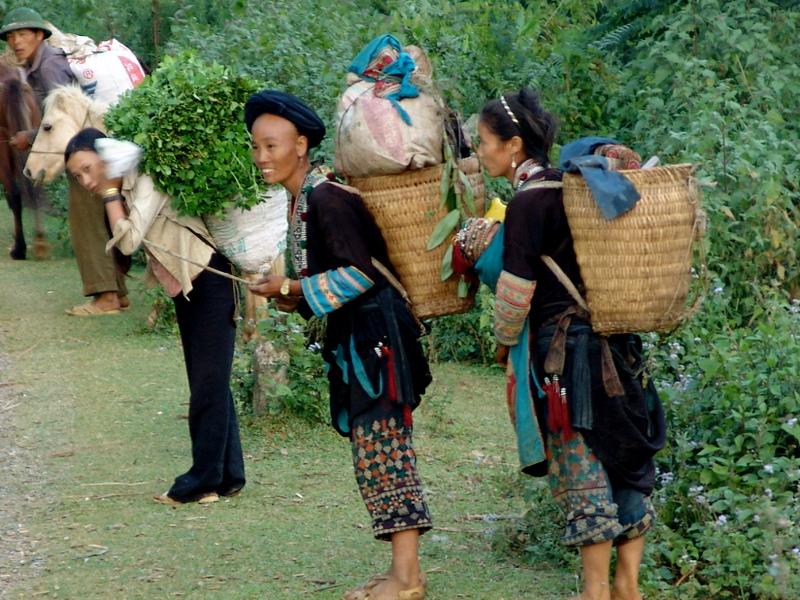 excursions sapa vietnam