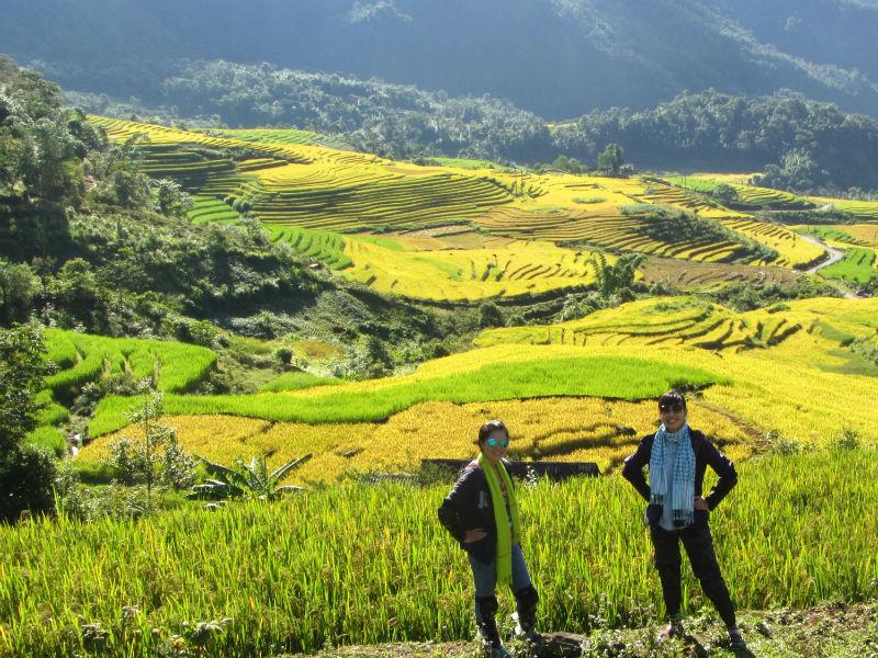 randonnée rizière sapa