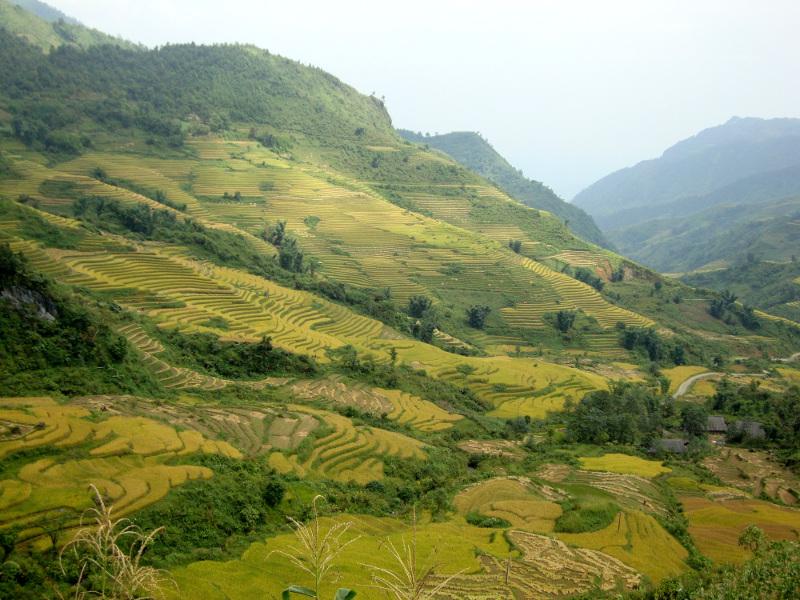 Trekking Nord Vietnam